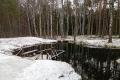 Отдых в зимнем Полесье